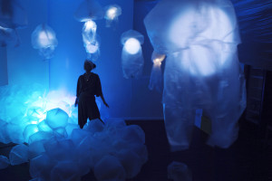 jellyfish 1-edited kleiner